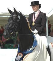 Hannoveraner Dramatic Weltmeister der sechsjaehrigen Dressurpferde