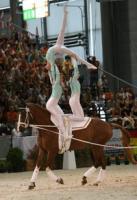 Ein glanzvolle Vorstellung lieferte die deutsche Juniorengruppe in Brno ab