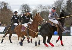 Premiere: Polo auf Schnee in Westfalen