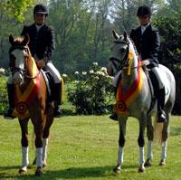 Pony-Casting Pferdestammbuch Weser-Ems